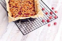 鹅莓蛋糕 免版税图库摄影