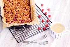 鹅莓蛋糕 图库摄影