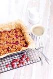 鹅莓蛋糕 库存图片
