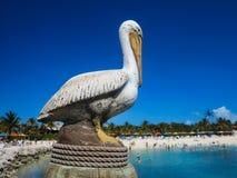鹈鹕雕象 免版税图库摄影