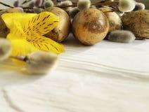 鹌鹑倒空在自然装饰白色木背景的蛋复活节g分支美丽的概念杨柳,花德国锥脚形酒杯 免版税库存图片