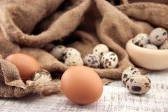 鹌鹑和鸡在土气木背景怂恿 软的看法 免版税库存照片