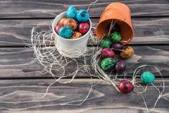 鹌鹑在木背景的复活节彩蛋构成 免版税图库摄影
