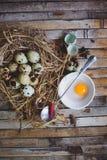 鹌鹑筑巢用被察觉的鸡蛋,匙子,在板材的打破的鸡蛋 库存照片