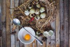 鹌鹑筑巢用被察觉的鸡蛋,匙子,在板材的打破的鸡蛋 库存图片