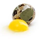 鹌鹑蛋卵黄质蛋白质 免版税库存图片