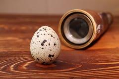 鹌鹑蛋和小望远镜 库存照片