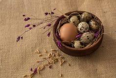 鹌鹑蛋和鸡在一个木碗怂恿 图库摄影