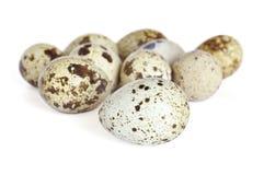 鹌鹑蛋 免版税库存照片