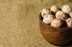 鹌鹑鸡蛋 图库摄影