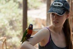 鹦鹉坐一个少妇的手在集居区的Nir大卫澳大利亚动物园淦宗师,在以色列 库存照片