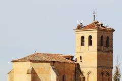 鹳在一座老钟楼的上面筑巢在塞戈维亚,西班牙 库存照片