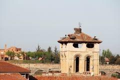 鹳在一座老钟楼的上面筑巢在塞戈维亚,西班牙 免版税图库摄影