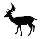 鹿剪影 皇族释放例证