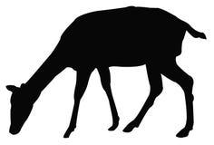 鹿剪影 向量例证
