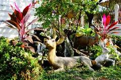 鹿和兔子 免版税库存照片