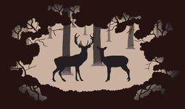 鹿和母鹿在森林里 库存照片