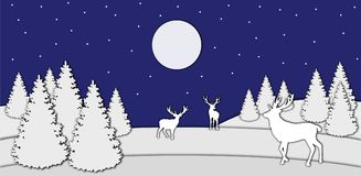 鹿在夜森林里 库存照片