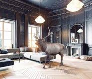 鹿在屋子里 免版税图库摄影