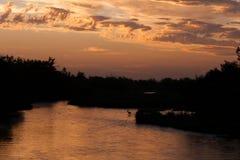 鹿在普拉特河在黎明 免版税库存照片