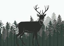 鹿在森林 向量例证