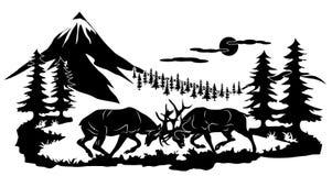 鹿战斗 免版税图库摄影