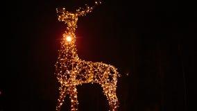 鹿明亮的圣诞节照明家庭  免版税库存图片