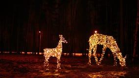 鹿明亮的圣诞节照明家庭  免版税图库摄影