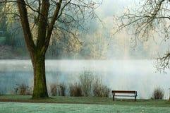 鹿有雾的湖 免版税库存照片