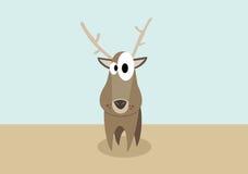 鹿混乱 图库摄影