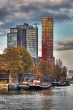 鹿特丹地平线 图库摄影
