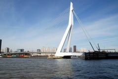 鹿特丹现代建筑学在荷兰 图库摄影