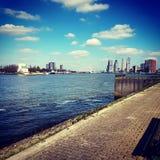 鹿特丹的地平线 图库摄影