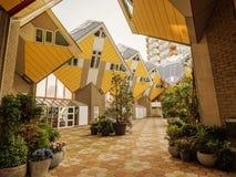 鹿特丹,荷兰- 2018年5月31日:求房子Kubuswoningen -城市的立方多数偶象吸引力 建筑师掀动了传统, 免版税库存照片