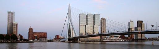 鹿特丹 库存图片