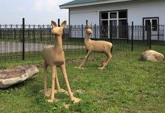 鹿雕塑在草坪的 旅游复杂西伯利亚人Podvorye 免版税图库摄影