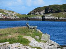 鹿雕塑 库存图片