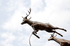 鹿雕象 免版税库存图片