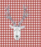 鹿题头被充塞的白色 免版税库存照片