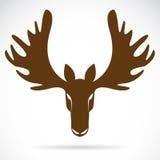 鹿头的传染媒介图象 库存图片