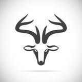 鹿头的传染媒介图象 库存照片