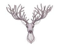 鹿头 美丽的垫铁 讲的神色 库存图片