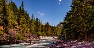 麦克唐纳小河小瀑布在距离 库存照片