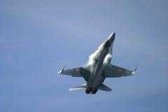 麦克当诺道格拉斯公司F/A-18大黄蜂 图库摄影