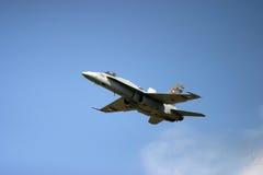 麦克当诺道格拉斯公司F/A-18大黄蜂F 18喷气式歼击机 图库摄影