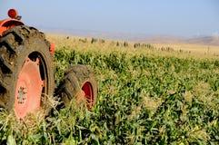 麦地拖拉机工作 图库摄影