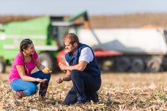 麦地的农夫在收获期间 免版税库存照片