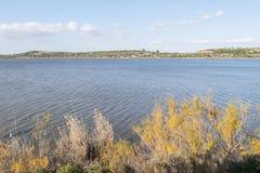 麦地那盐水湖,赫雷斯de la弗隆特里,卡迪士,西班牙 免版税库存照片