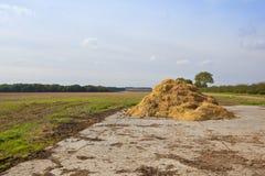 麦堆和森林地 免版税库存图片