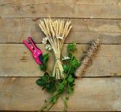 麦子、串、庭院pruner和雏菊在木背景 免版税库存照片